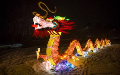 20-метровый китайский дракон поселился в Минске